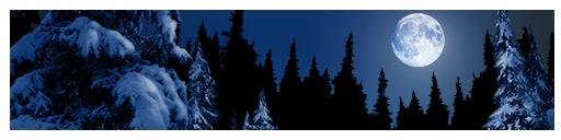 challenge strip winter 01