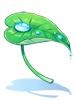 Folha-chuva