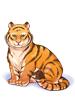 Tigre%20Companheiro.png